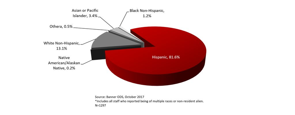 Total Staff by Race-Ethnicity, Fall 2017
