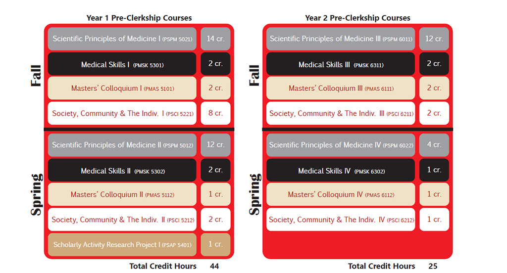 Curriculum Content and Overview